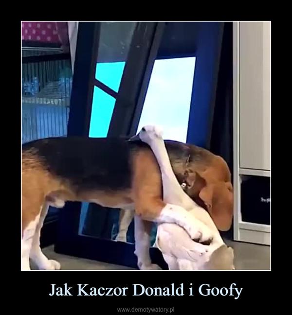 Jak Kaczor Donald i Goofy –