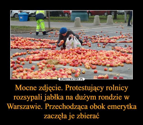 Mocne zdjęcie. Protestujący rolnicy rozsypali jabłka na dużym rondzie w Warszawie. Przechodząca obok emerytka zaczęła je zbierać