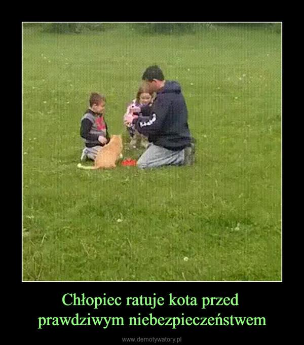 Chłopiec ratuje kota przed prawdziwym niebezpieczeństwem –