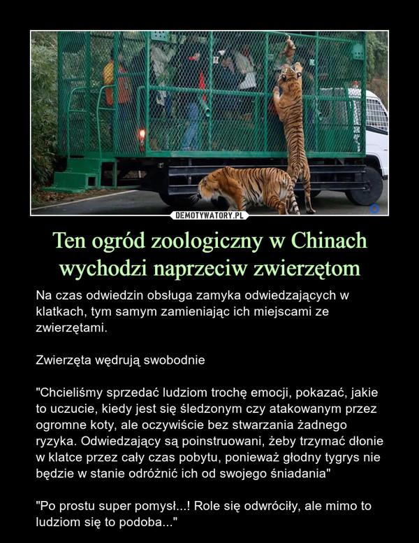 """Ten ogród zoologiczny w Chinach wychodzi naprzeciw zwierzętom – Na czas odwiedzin obsługa zamyka odwiedzających w klatkach, tym samym zamieniając ich miejscami ze zwierzętami.Zwierzęta wędrują swobodnie""""Chcieliśmy sprzedać ludziom trochę emocji, pokazać, jakie to uczucie, kiedy jest się śledzonym czy atakowanym przez ogromne koty, ale oczywiście bez stwarzania żadnego ryzyka. Odwiedzający są poinstruowani, żeby trzymać dłonie w klatce przez cały czas pobytu, ponieważ głodny tygrys nie będzie w stanie odróżnić ich od swojego śniadania""""""""Po prostu super pomysł...! Role się odwróciły, ale mimo to ludziom się to podoba..."""""""