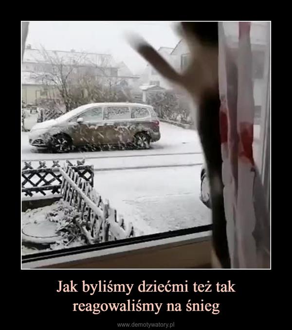 Jak byliśmy dziećmi też takreagowaliśmy na śnieg –