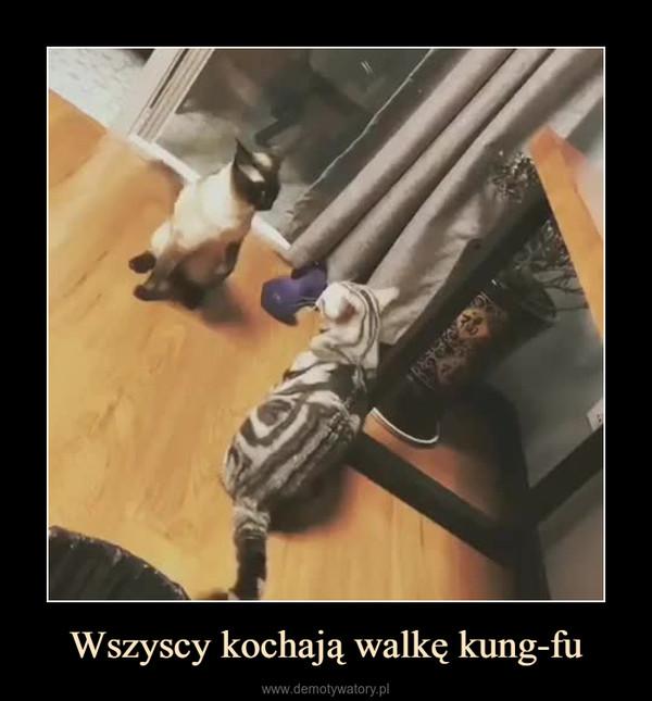 Wszyscy kochają walkę kung-fu –