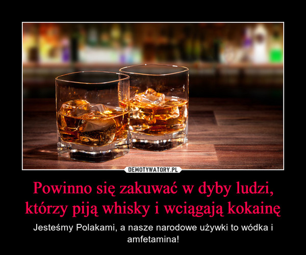 Powinno się zakuwać w dyby ludzi, którzy piją whisky i wciągają kokainę – Jesteśmy Polakami, a nasze narodowe używki to wódka i amfetamina!