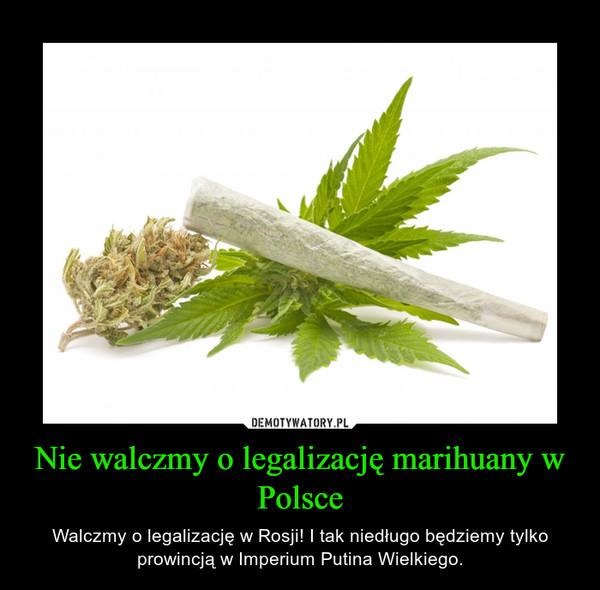 Nie walczmy o legalizację marihuany w Polsce – Walczmy o legalizację w Rosji! I tak niedługo będziemy tylko prowincją w Imperium Putina Wielkiego.