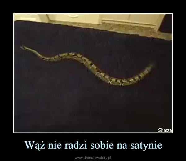 Wąż nie radzi sobie na satynie –