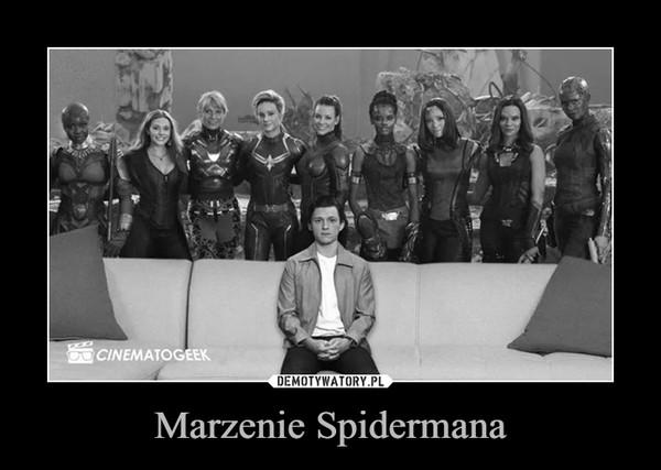 Marzenie Spidermana –