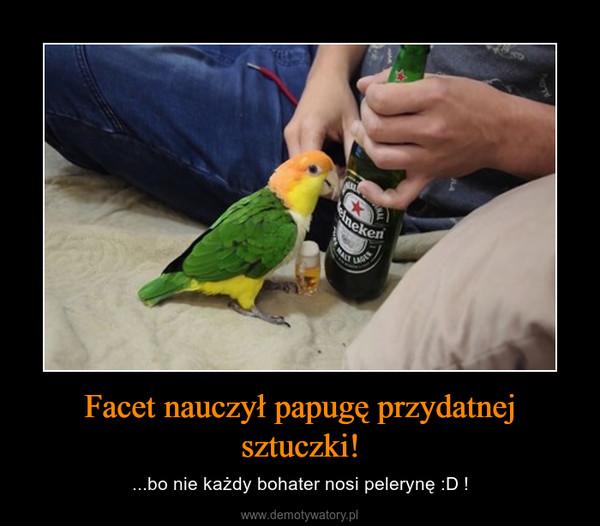 Facet nauczył papugę przydatnej sztuczki! – ...bo nie każdy bohater nosi pelerynę :D !