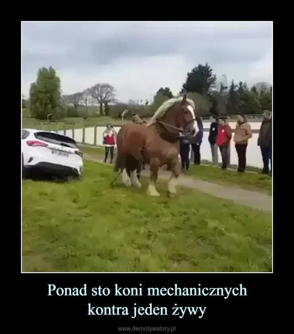 Ponad sto koni mechanicznychkontra jeden żywy –