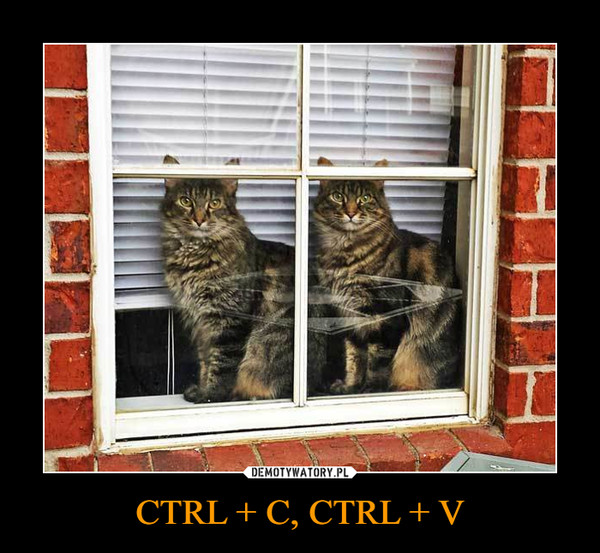 CTRL + C, CTRL + V –