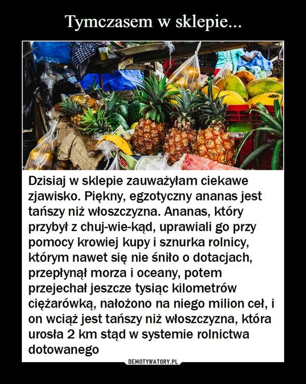 –  W sklepieDzisiaj w sklepie zauważyłam ciekawezjawisko. Piękny, egzotyczny ananas jesttańszy niż włoszczyzna. Ananas, któryprzybył z chuj-wie-kąd, uprawiali go przypomocy krowiej kupy i sznurka rolnicy,którym nawet się nie śniło o dotacjach,przepłynął morza i oceany, potemprzejechał jeszcze tysiąc kilometrówciężarówką, nałożono na niego milion cel, ion wciąż jest tańszy niż włoszczyzna, któraurosła 2 km stąd w systemie rolnictwadotowanegoDEMOTYWATORY.PL