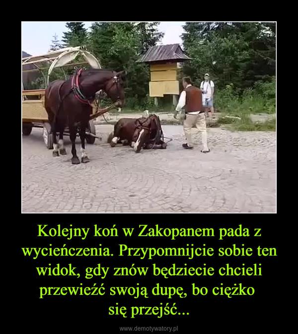 Kolejny koń w Zakopanem pada z wycieńczenia. Przypomnijcie sobie ten widok, gdy znów będziecie chcieli przewieźć swoją dupę, bo ciężko się przejść... –
