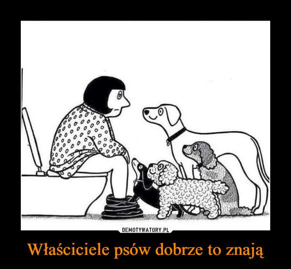 Właściciele psów dobrze to znają –