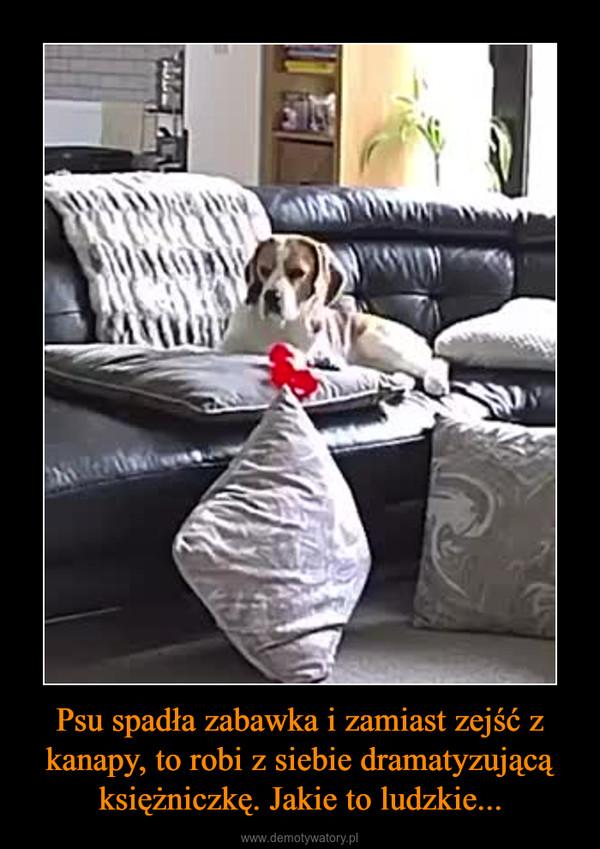 Psu spadła zabawka i zamiast zejść z kanapy, to robi z siebie dramatyzującą księżniczkę. Jakie to ludzkie... –