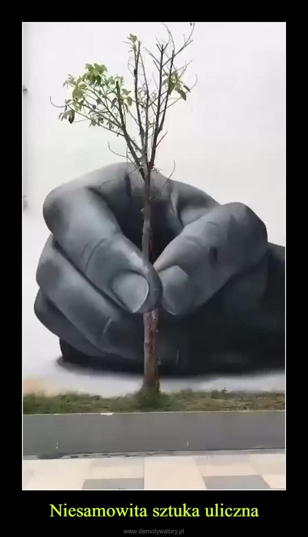 Niesamowita sztuka uliczna –