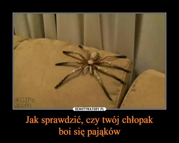 Jak sprawdzić, czy twój chłopakboi się pająków –