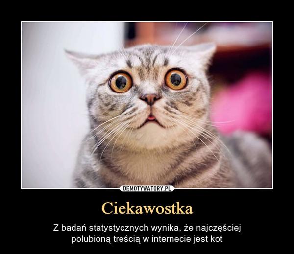Ciekawostka – Z badań statystycznych wynika, że najczęściejpolubioną treścią w internecie jest kot