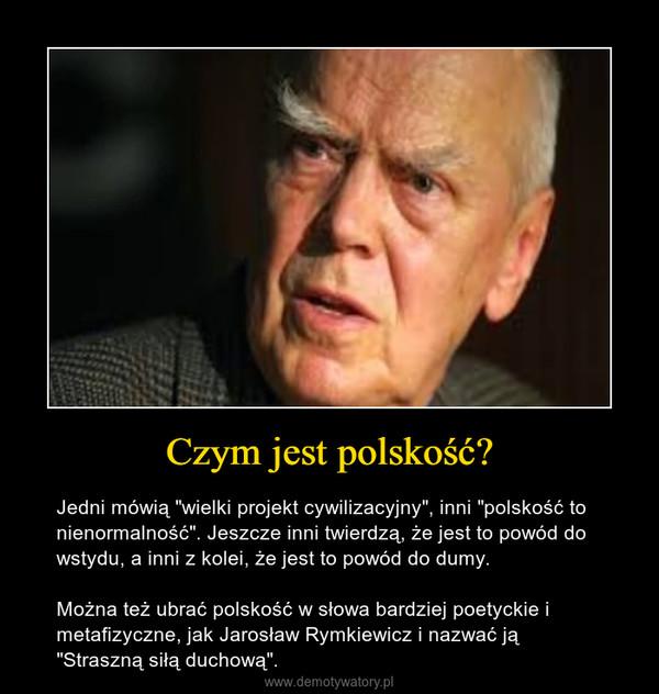 """Czym jest polskość? – Jedni mówią """"wielki projekt cywilizacyjny"""", inni """"polskość to nienormalność"""". Jeszcze inni twierdzą, że jest to powód do wstydu, a inni z kolei, że jest to powód do dumy. Można też ubrać polskość w słowa bardziej poetyckie i metafizyczne, jak Jarosław Rymkiewicz i nazwać ją """"Straszną siłą duchową""""."""