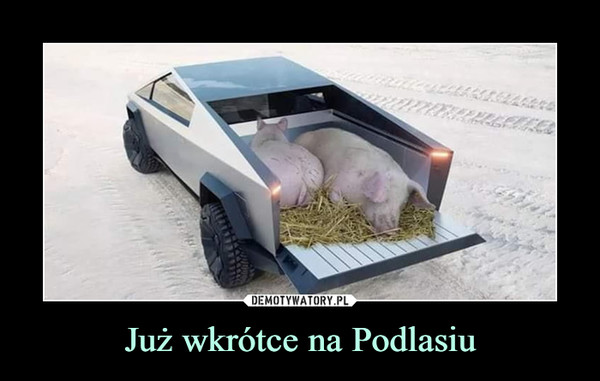 Już wkrótce na Podlasiu –
