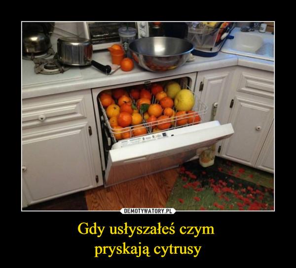 Gdy usłyszałeś czym pryskają cytrusy –