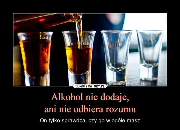 Alkohol nie dodaje,ani nie odbiera rozumu – On tylko sprawdza, czy go w ogóle masz