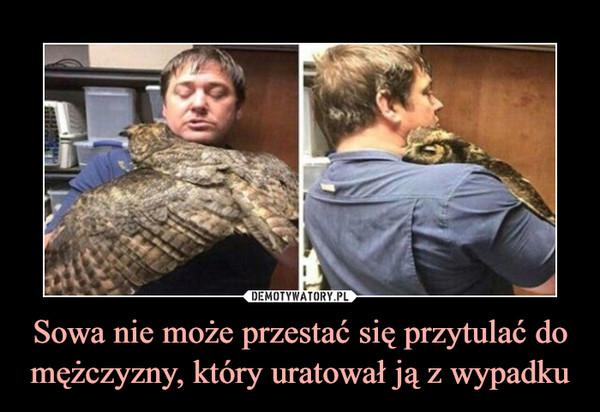 Sowa nie może przestać się przytulać do mężczyzny, który uratował ją z wypadku –