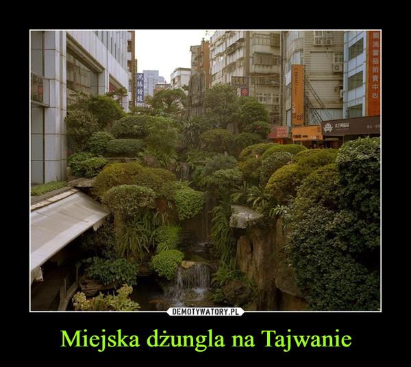 Miejska dżungla na Tajwanie –