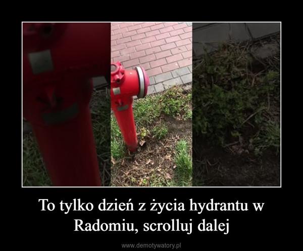 To tylko dzień z życia hydrantu w Radomiu, scrolluj dalej –