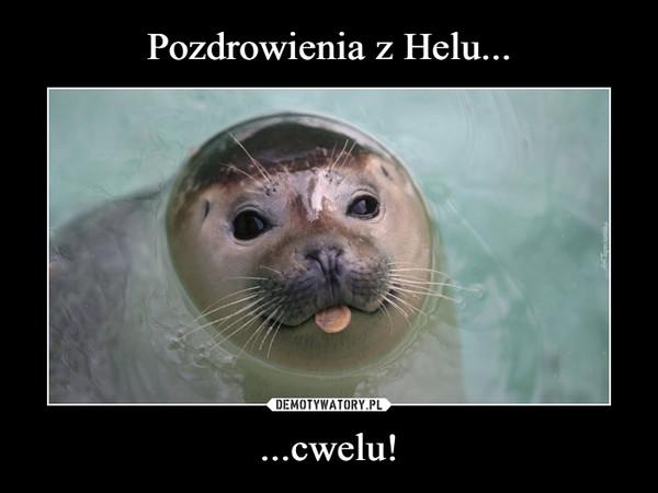 ...cwelu! –