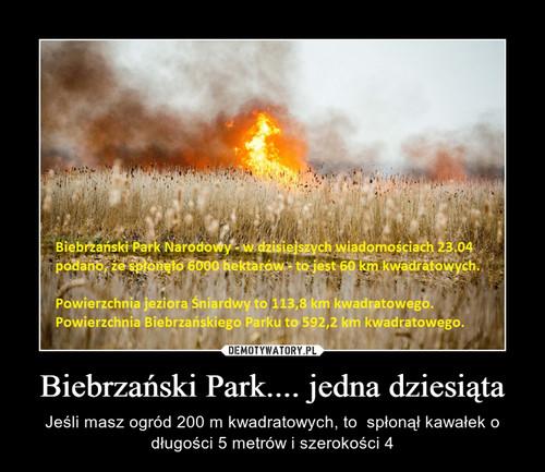 Biebrzański Park.... jedna dziesiąta