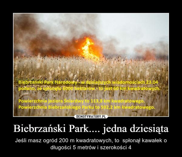 Biebrzański Park.... jedna dziesiąta – Jeśli masz ogród 200 m kwadratowych, to  spłonął kawałek o długości 5 metrów i szerokości 4