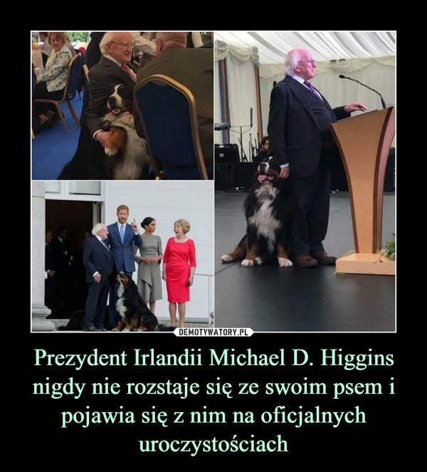 Prezydent Irlandii Michael D. Higgins nigdy nie rozstaje się ze swoim psem i pojawia się z nim na oficjalnych uroczystościach –
