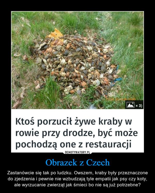 Obrazek z Czech – Zastanówcie się tak po ludzku. Owszem, kraby były przeznaczone do zjedzenia i pewnie nie wzbudzają tyle empatii jak psy czy koty, ale wyrzucanie zwierząt jak śmieci bo nie są już potrzebne?