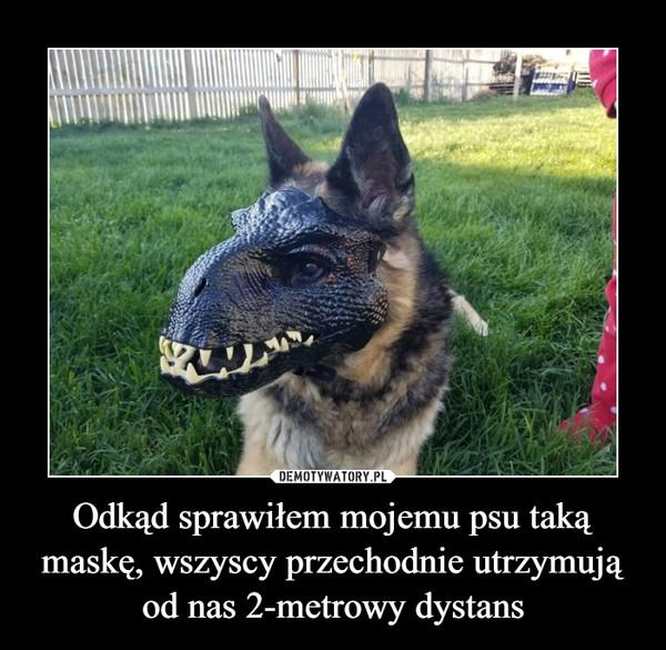 Odkąd sprawiłem mojemu psu taką maskę, wszyscy przechodnie utrzymują od nas 2-metrowy dystans –