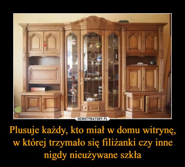 Plusuje każdy, kto miał w domu witrynę, w której trzymało się filiżanki czy inne nigdy nieużywane szkła –