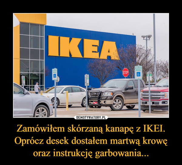 Zamówiłem skórzaną kanapę z IKEI. Oprócz desek dostałem martwą krowę oraz instrukcję garbowania... –  IKEA