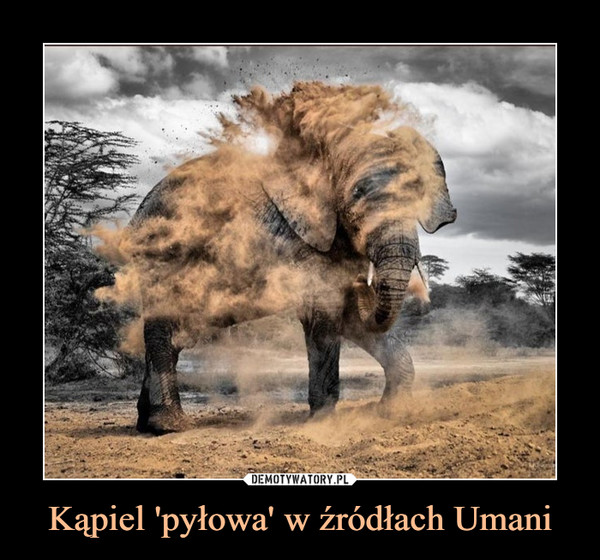 Kąpiel 'pyłowa' w źródłach Umani –