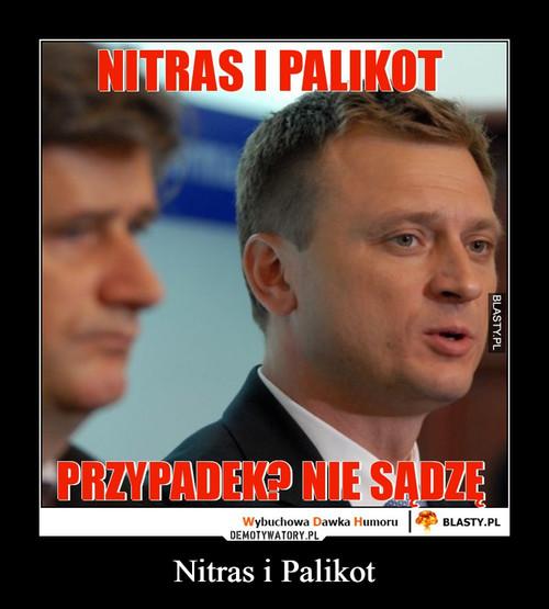 Nitras i Palikot