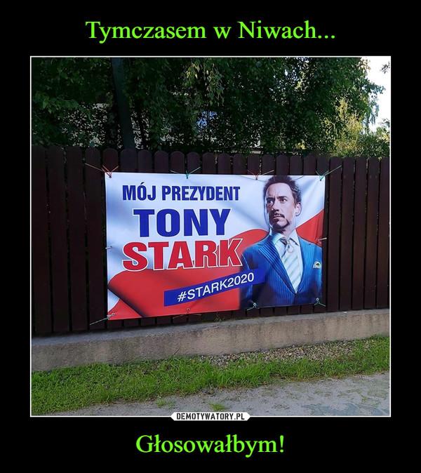 Głosowałbym! –  MÓJ PREZYDENT TONY STARK
