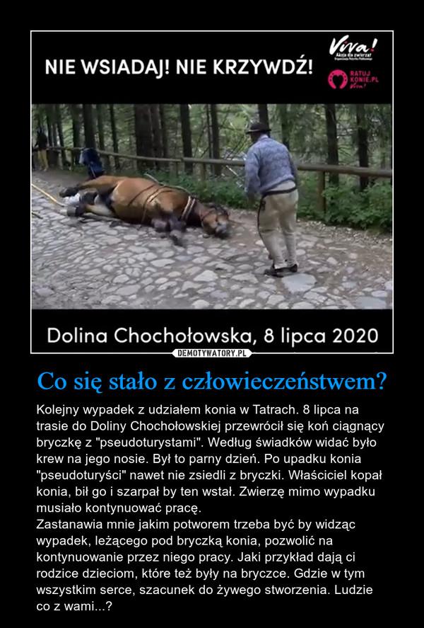 """Co się stało z człowieczeństwem? – Kolejny wypadek z udziałem konia w Tatrach. 8 lipca na trasie do Doliny Chochołowskiej przewrócił się koń ciągnący bryczkę z """"pseudoturystami"""". Według świadków widać było krew na jego nosie. Był to parny dzień. Po upadku konia """"pseudoturyści"""" nawet nie zsiedli z bryczki. Właściciel kopał konia, bił go i szarpał by ten wstał. Zwierzę mimo wypadku musiało kontynuować pracę. Zastanawia mnie jakim potworem trzeba być by widząc wypadek, leżącego pod bryczką konia, pozwolić na kontynuowanie przez niego pracy. Jaki przykład dają ci rodzice dzieciom, które też były na bryczce. Gdzie w tym wszystkim serce, szacunek do żywego stworzenia. Ludzie co z wami...?"""