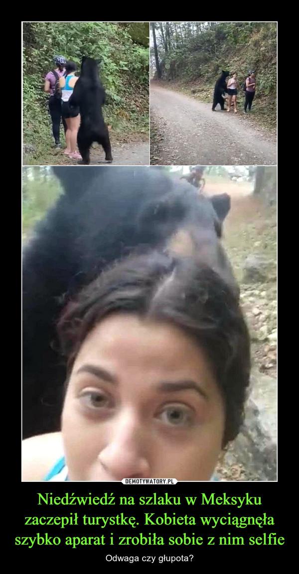 Niedźwiedź na szlaku w Meksyku zaczepił turystkę. Kobieta wyciągnęła szybko aparat i zrobiła sobie z nim selfie – Odwaga czy głupota?