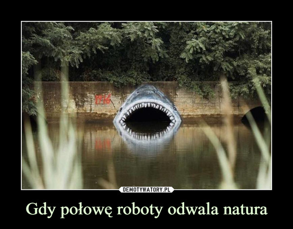 Gdy połowę roboty odwala natura –