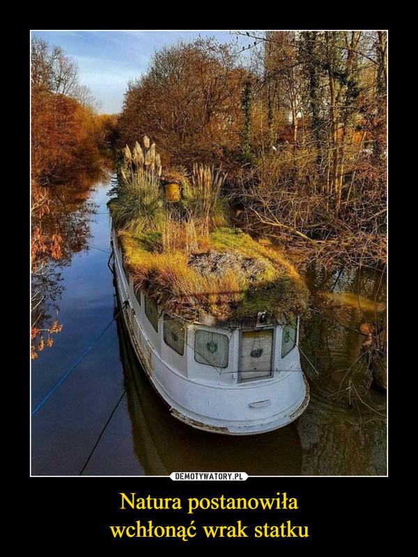 Natura postanowiławchłonąć wrak statku –