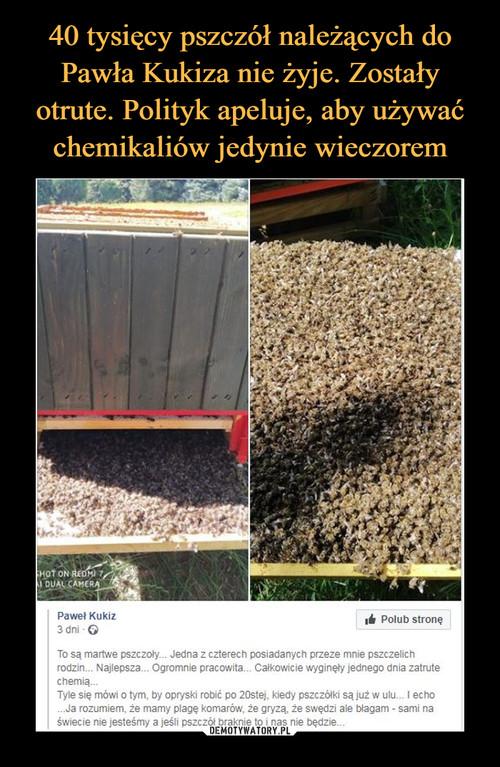 40 tysięcy pszczół należących do Pawła Kukiza nie żyje. Zostały otrute. Polityk apeluje, aby używać chemikaliów jedynie wieczorem