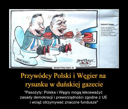 Przywódcy Polski i Węgier na  rysunku w duńskiej gazecie