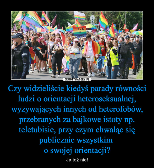 Czy widzieliście kiedyś parady równości ludzi o orientacji heteroseksualnej, wyzywających innych od heterofobów, przebranych za bajkowe istoty np. teletubisie, przy czym chwaląc się publicznie wszystkim o swojej orientacji? – Ja też nie!