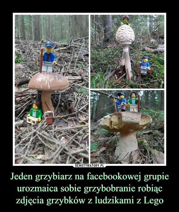 Jeden grzybiarz na facebookowej grupie urozmaica sobie grzybobranie robiąc zdjęcia grzybków z ludzikami z Lego –