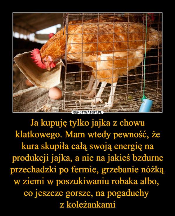 Ja kupuję tylko jajka z chowu klatkowego. Mam wtedy pewność, że kura skupiła całą swoją energię na produkcji jajka, a nie na jakieś bzdurne przechadzki po fermie, grzebanie nóżką w ziemi w poszukiwaniu robaka albo, co jeszcze gorsze, na pogaduchy z koleżankami –