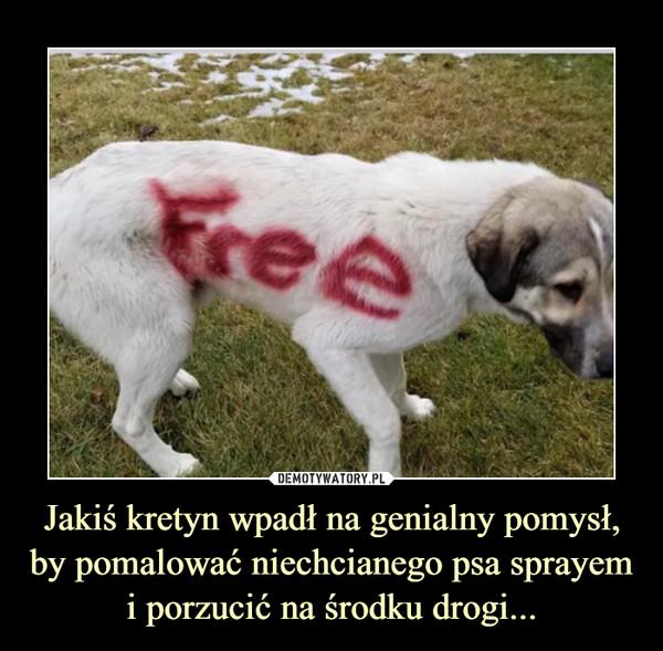 Jakiś kretyn wpadł na genialny pomysł, by pomalować niechcianego psa sprayem i porzucić na środku drogi... –