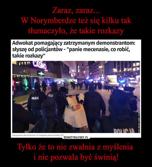 """Tylko że to nie zwalnia z myślenia i nie pozwala być świnią! –  Adwokat pomagający zatrzymanym demonstrantom: słyszę od policjantów - """"panie mecenasie, co robić, takie rozkazy"""""""