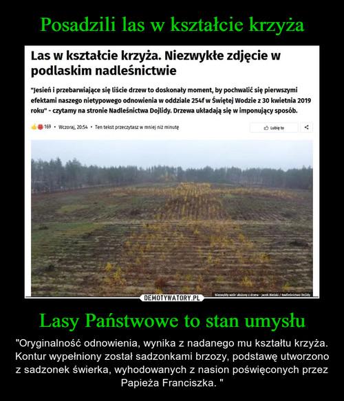 Posadzili las w kształcie krzyża Lasy Państwowe to stan umysłu